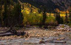 Great Day for a Ride (Nancy King Photography) Tags: lakecreek trees creek bicycle rockymountains bridge river nature mountains stream colorado aspens aspentrees fall biker rocks