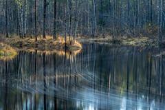 """""""And Quiet Flows the river Tiilikka"""" (teetaira) Tags: autumn longexposure reflection heijastus syksy kansallispuisto tiilikka nationalpark finland"""