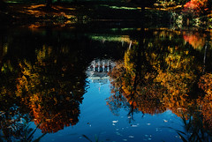 Ripples (ewitsoe) Tags: 35mm autumn city cityscape fall nikond80 street warszawa erikwitsoe erikwitsoecom poland urban warsaw park water reflection palace presidential leaves colorful goldenautumn ripples watery trees laszenki setting sunlight sun warm lazienki