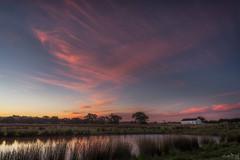 A little dance of Pink DSC_8642 (BlueberryAsh) Tags: craigieburn sunset greekorthodoxchurch landscape clouds cloudsstormssunsetssunrises pink sky grass lake outdoors melbourne australian water reflection nikon24120 nikond750