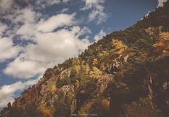 Tonos (E.Cano) Tags: nature natural naturescape autumn otoño fall warm sky clouds cloudscape mountain trees ngc andorra ordino