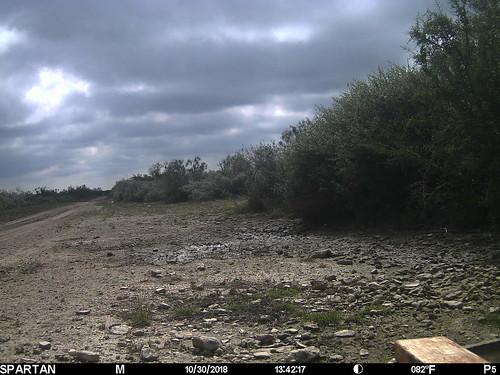 2018-10-30 13:42:17 - Crystal Creek 2