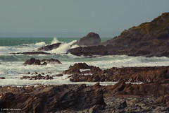 3K006681a_C_2017-11-23 (Kernowfile) Tags: cornwall cornish dollarcove gunwalloe thelizardpeninsula waves water sea rocks cliffs breakers spray sky