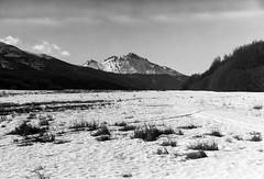 (glauberpitfall) Tags: filmphotography filmisnotdead pentax spotmaticf takumar50mmf14 kodak400tx kodakd76 blackandwhite monochrome travelphotography snow mountains ushuaia tierradelfuego argentina
