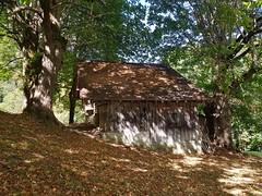 Wilderswil scenes 104 (SierraSunrise) Tags: switzerland wilderswil europe cabin barn shed