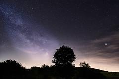 Milky Way over Bamberg (Carbonicus) Tags: bamberg milchstrase milkyway langzeitbelichtung lomgexposure ilce7m3 laowa15mmf2fezerod baum tree stimmung mood nacht night