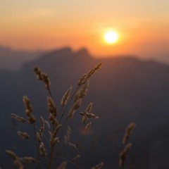 Le soleil se couche sur la Tour d'Aï (6line8) Tags: picchaussy sunset dof montagne préalpes prealps switzerland paysdenhaut lesmosses