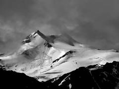 Cevedale (Zufallspitze) (giorgiorodano46) Tags: agosto2014 august 2014 giorgiorodano cevedale zufallspitze solda valmartello puntabeltovo bw biancoenero blackwhite mountain alpi alpes alpen alps altoadige sudtirolo italy landscape mountainlandscape