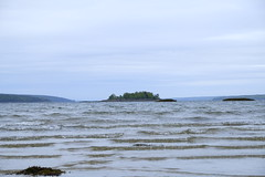 Looks like you could swim right out to that island. (robin.salant) Tags: sealegacy saveourwaters curtiscove downeast maine mainecoast