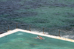 Swimmer (iansand) Tags: swimmer bondiicebergs pool oceanpool bondi