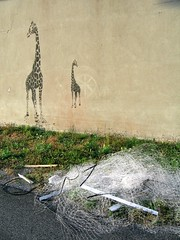 It's a jungle, out there, son! (Robert Saucier) Tags: montréal montreal mur wall graffiti stencil streetart pelouse déchets garbage girafe img2359