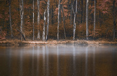 Mist over lake reflections (Bernie Kasper (5 million views)) Tags: art berniekasper color d750 effect family fall hiking indiana jeffersoncounty light landscape leaf leaves love lake madisonindiana madison nature nikon naturephotography new outdoors outdoor old photography photos raw red statepark travel tree trail trees unitedstates usa vacation vivid