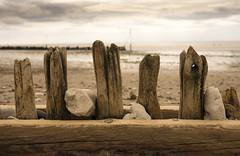 Old Groyne (simonannable) Tags: groyne hunstanton fujifilmxt2 northnorfolk norfolk beach decay coast coastal uk west rustic wood fuji