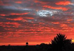 Sonnenaufgang in Bad Bergzabern (spitzkoefele) Tags: sonnenaufgang landschaft pfalz morgenrot badbergzabern himmel