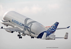 BelugaXL_Airbus_F-WBXL-015 (Ragnarok31) Tags: airbus a330 a330f fwbxl belga xl cargo a330743l