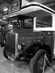 London transport LT1076 Acton Depot 22/09/18. (Ledlon89) Tags: london bus buses londonbus londonbuses londontransport lt lte lptb vintagebuses oldlondon transport leyland aec ltmuseum actondepot ltm