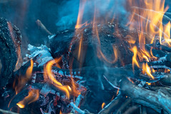 Fire in the Spring Chill (Merrillie) Tags: wood charcoal spring bonfire firepit chilly fire outdoors keepingwarm rural woodfire orange cold