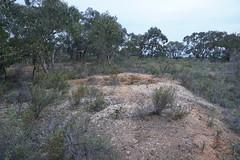 White Hills Historic Mine Reserve (LJMcK) Tags: whitehills bendigo goldfields centralvictoria mining history victoria australia
