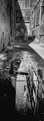 Reflection - Film Hasselblad (Photo Alan) Tags: vancouver canada film filmcamera filmscan filmstreet reflection blackwhite blackandwhite hasselblad hasselbladxpan monochrome street streetphotography