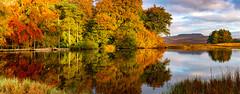 Higger Tor in Autumn (Peter Quinn1) Tags: longshawestate higgertor derbyshire autumn reflections autumncolour