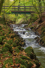 Woodland waterfall (andythomas390) Tags: leaves skiptonwoods nikon waterfall woods 18200mm autumn lichen landscapewaterfall d7200 rocks