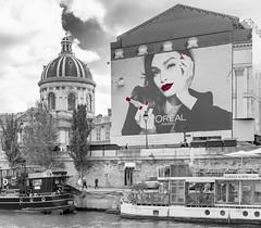 Paris / Париж (dmilokt) Tags: чб bw черный белый black white город city town dmilokt nikon d750 paris париж beginnerdigitalphotographychallengewinner