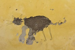 IMG_7243 rue Fleury Prudon Arles (meuh1246) Tags: streetart 13 animaux arles ruefleuryprudon chat