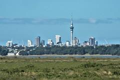 North Island, NZ - Entering Auckland on North Western Motorway (zorro1945) Tags: auckland northisland nz newzealand flickrtravelaward