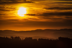 forest series #139 (Stefan A. Schmidt) Tags: warstein nordrheinwestfalen deutschland de forest trees sunrise sun landscape germany