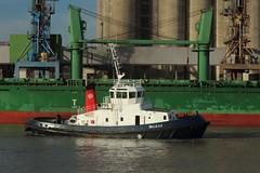 BELLE ILE (Jakez Bo) Tags: remorqueur tug navire ship vessel
