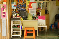 dog napping (Michiko.Fujii) Tags: kaohsiung littledog pooch dognap workshop