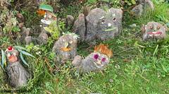 BS, Schönheiten im Schulgarten (bleibend) Tags: 2018 em5 leicadgsummilux25mmf14 omd blumen braunschweig bs dowesee farbe flower flowers hübsch m43 mft natur nature niedersachsen olympus olympusem5 olympusomd pflanzen schulgarten