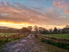 Nicer than usual (tubblesnap) Tags: motorola silsden steeton sunrise morning early snapseed yorkshire scenery landscape commute aire valley airedale fields trees gate track