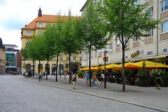 Citytrees (davidvankeulen) Tags: europe europa deutschland duitsland germany leipzig saxony saksen sachsen city stadt ville stad davidvankeulen davidvankeulennl davidcvankeulen urbandc citytrees boom stadsboom greencity groen green