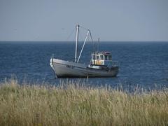 Sõrve Peninsula (Toni Kaarttinen) Tags: estonia viro saaremaan saarenmaa island roadtrip holiday baltic baltics balticsea sõrve sörve sorve sea ship fishingship fishing boat