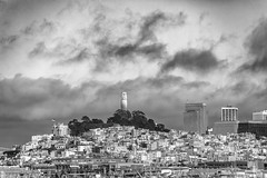 San Francisco Days, San Francisco Nights (Thomas Hawk) Tags: america bayarea california coittower sf sfbayarea sanfrancisco usa unitedstates unitedstatesofamerica bw us fav10 fav25 fav50 fav100