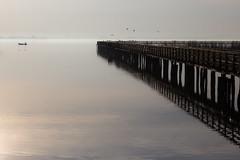 Lake mood (Massimo_Discepoli) Tags: lake boat pier jetty reflections water birds landscape mood