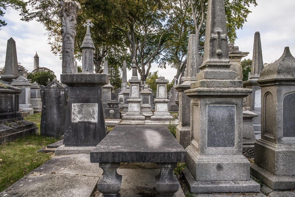SEPTEMBER 2018 VISIT TO GLASNEVIN CEMETERY [ I USED A BATIS 25mm LENS AND I EXPERIMENTED WITH CAPTURE ONE]-144770