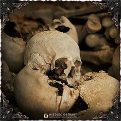 """""""Everything that mattered is just, A city of dust, Covering both of us"""" - Shinedown . 💀Turn on post notifications, click link in BIO to follow along on our journey, and sign up on our mailing list at: ☩ sedlecossuary.mechanicalwhispers.com ☩ . :star (Sedlec Ossuary Project) Tags: sedlecossuaryproject sedlec ossuary project sedlecossuary kostnice kutnahora kutna hora prague czechrepublic czech republic czechia churchofbones church bones skeleton skulls humanbones human mementomori memento mori creepy travel macabre death dark historical architecture historicpreservation historic preservation landmark explore unusual mechanicalwhispers mechanical whispers instagram ifttt"""