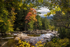 Autumn at Jackson Falls (FotoFloridian) Tags: yellow nature forest tree river stream water landscape outdoors scenics beautyinnature flowingwater autumn rockobject waterfall greencolor leaf woodland mountain tranquilscenel sony alpha a6000 nik