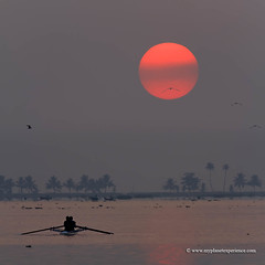 Kerala - India (My Planet Experience) Tags: kerala backwaters sunrise sun red bayou boat waterway palmtree malabar arabian sea coast people squarre water day color outdoors india inde भारत ind wwwmyplanetexperiencecom myplanetexperience