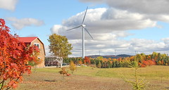 AUTUMN SCENERY | FALL COLOURS | HORIZONTAL AXIS WIND TURBINES | GASPESIE | QUEBEC | CANADA (C C Gosselin) Tags: scenery | fall colours horizontal axis wind turbines gaspesie quebec canada canon 7d 7dmarkii rebel t2i canonrebelt2i eos canon7d markii rebelt2i canonrebel canont2i eost2i eos7d eos7dmarkii mark 2 mark2 eos7dmark2 canon7dmarkii ii canoneosrebelt2i canoneos7d canoneos ph:camera=canon autumn flickr