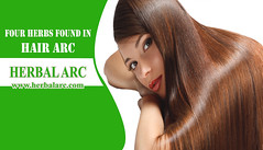 Four Herbs Found in Hair Arc (herbalarc) Tags: hair loss what causes remedy symptoms treatment for men women medicine products solutions pills natural vegan home nutrition problem chinese herbs