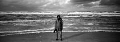 Wild North Sea (selyfriday) Tags: selyfriday wwwnassiocomempty nassiocom xpan hasselblad