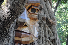troll in the woods (christiaan_25) Tags: troll woods forest waiting wood art exhibit trollhunt mortonarboretum danishartistthomasdambo reclaimedwood face eye stare tree net trap fun culture