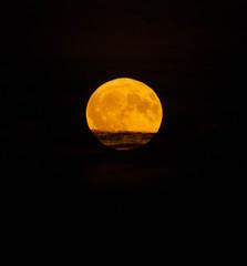 Full Moon 24 Oct 2018 (Sculptor Lil) Tags: moonrise fullmoon moon canon700d london