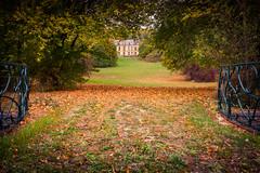 Color-00085 (Sivispacem...) Tags: chateau castle abandonned lost abandonné batiment parc foret forest autumn fall automne sony a7rii zeiss 35 28 france