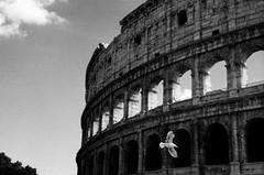 Rome, Italy (alex omarsson) Tags: 69b 1600 2017 35mm hp5 italy jupiter8 leicam6 xtol11 ilfordhp5