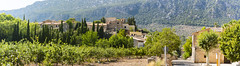 Orient is a small village in the mountains of Mallorca (Sebas Adrover) Tags: field village mountains spain typical meadow sun culture agriculture harvest majorca balearic heat nature orient houses grass mediterranean landmark scene ancient scenic spanish trees construction outdoor travel landscape architecture stone mallorca traditional town tourism old forest buildings mountainous rocks mountain photography nopeople outdoors mountainrange smalltown horizontal day island bunyola tramuntana