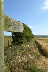 Wolds Way sign (Bods) Tags: yorkshirewoldsway staxtonwold gantontofileywalk northyorkshire cottondaleslack yorkshirewoldswaysign walk yorkshirewoldswayday5